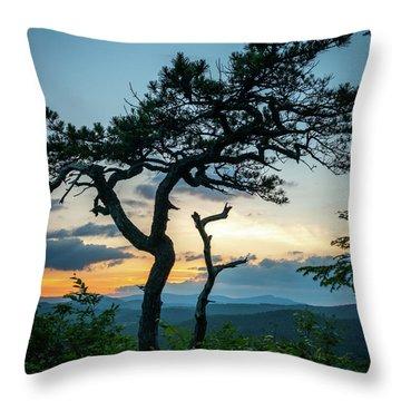 Blue Ridge Mountains Dr. Tree Throw Pillow