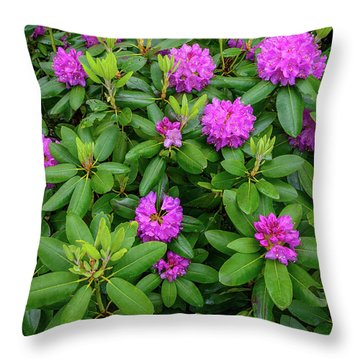 Blue Ridge Mountains Rhododendron Blooming Throw Pillow
