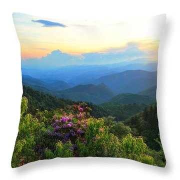 Blue Ridge Parkway And Rhododendron  Throw Pillow