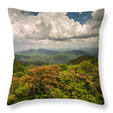Blue Ridge Parkway Green Knob Overlook Throw Pillow