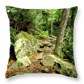 Throw Pillow featuring the photograph Blue Ridge Parkway Hiking Trail by Meta Gatschenberger