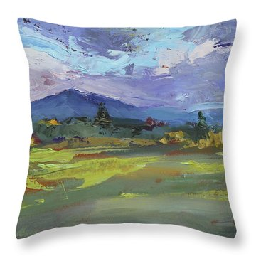 Blue Ridge Parkway Lookout Throw Pillow