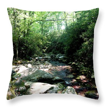 Blue Ridge Parkway Stream Throw Pillow