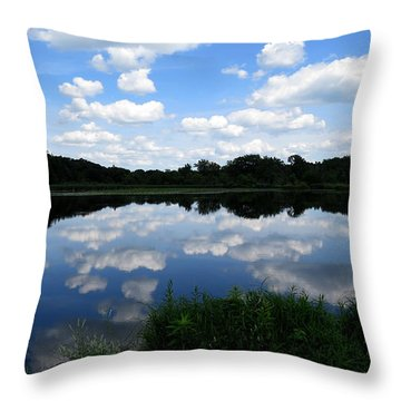 Throw Pillow featuring the photograph Blue Skies At Cadiz Springs by Kimberly Mackowski