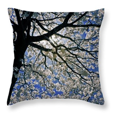 Throw Pillow featuring the photograph Blue Skies Smiling At Me by Linda Unger