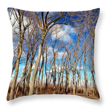 Throw Pillow featuring the photograph Blue Sky And Trees by Valentino Visentini