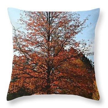 Blue Sky Throw Pillow by Jana E Provenzano