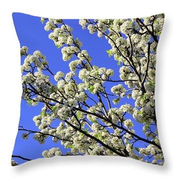Blue Sky Pear Blossom Throw Pillow