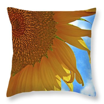 Blue Sky Sunflower Throw Pillow
