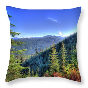 Throw Pillow featuring the photograph Blue Skykomish by Spencer McDonald