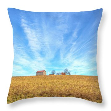 Throw Pillow featuring the digital art Blue Skys And Yellow Fields by Randy Steele