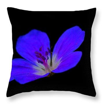 Blue Stamen Throw Pillow