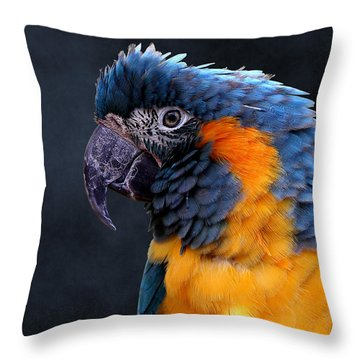 Blue-throated Macaw Profile Throw Pillow