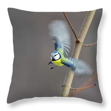 Blue Tit In Flight Throw Pillow