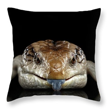 Reptiles Throw Pillows