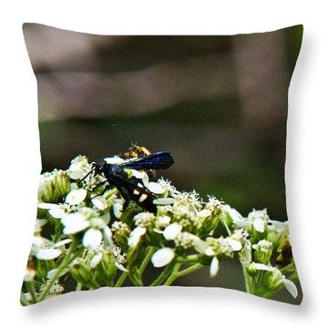 Blue Wasp 2 Throw Pillow by Douglas Barnett