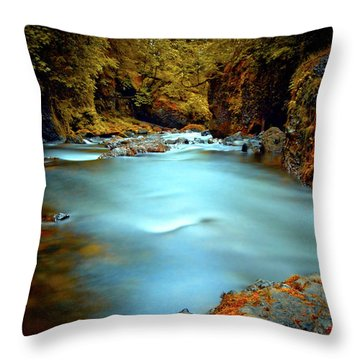Blue Water And Rusty Rocks Signed Throw Pillow