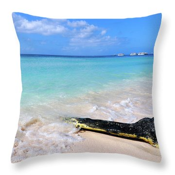 Blue Water And White Sand Throw Pillow