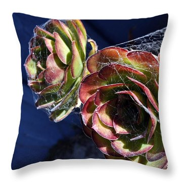 Blue Webs Throw Pillow