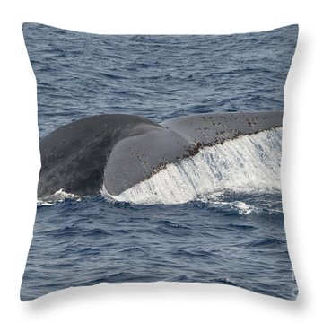 Blue Whale Fluke With Water Falloff Throw Pillow by Loriannah Hespe