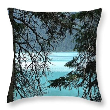 Throw Pillow featuring the photograph Blue Whisper by Al Fritz