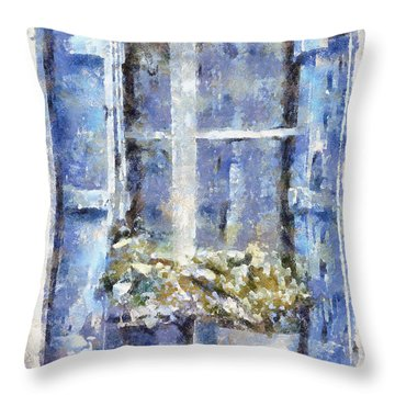 Blue Window Throw Pillow by Shirley Stalter
