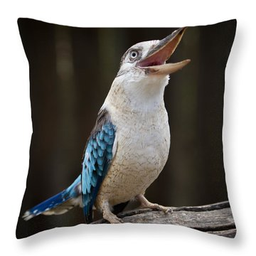 Blue Winged Kookaburra Throw Pillow
