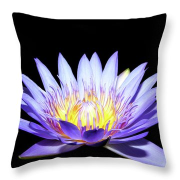 Throw Pillow featuring the photograph Blue Wonder by Judy Vincent