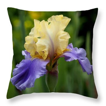 Blue Yellow Iris Germanica Throw Pillow