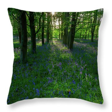 Bluebells In Oxey Woods Throw Pillow