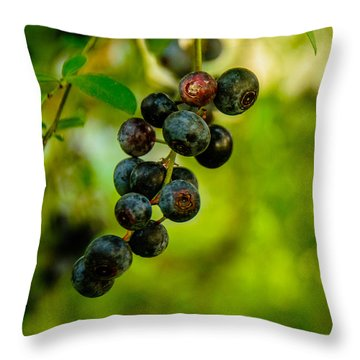 Throw Pillow featuring the photograph Blueberries by John Harding