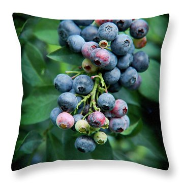 Blueberry Cluster Throw Pillow
