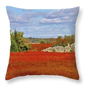 Blueberry Field Throw Pillow