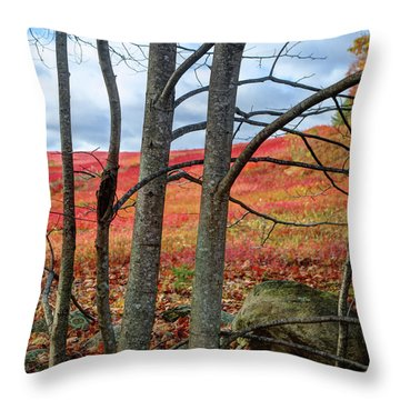 Blueberry Field Through The Wall - Cropped Throw Pillow