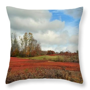 Blueberry Fields Throw Pillow by Jewels Blake Hamrick