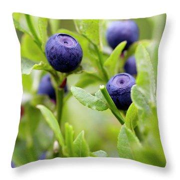 Blueberry Shrubs Throw Pillow by Michal Boubin
