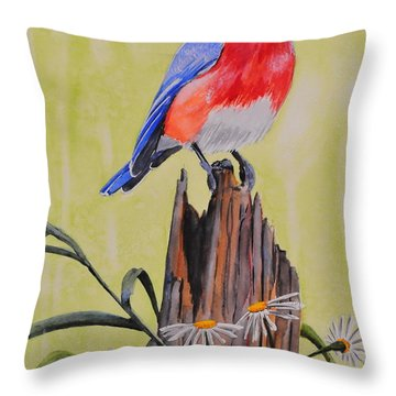 Bluebird And Daisies Throw Pillow