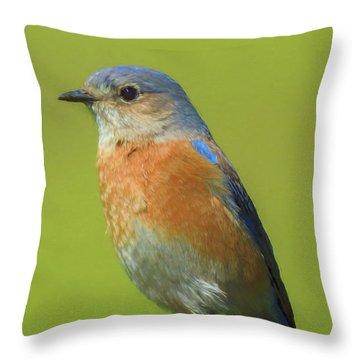 Bluebird Digital Art Throw Pillow