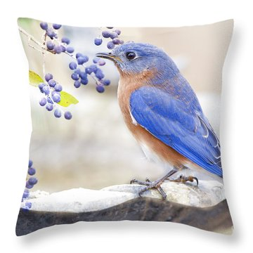 Bluebird Dreams Throw Pillow