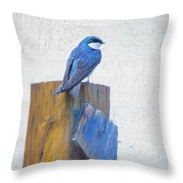 Throw Pillow featuring the photograph Bluebird by James BO Insogna