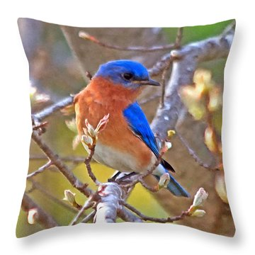 Bluebird Throw Pillow by Marion Johnson