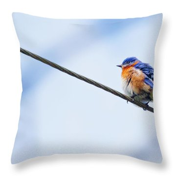 Throw Pillow featuring the photograph Bluebird Of Happiness by Linda Unger