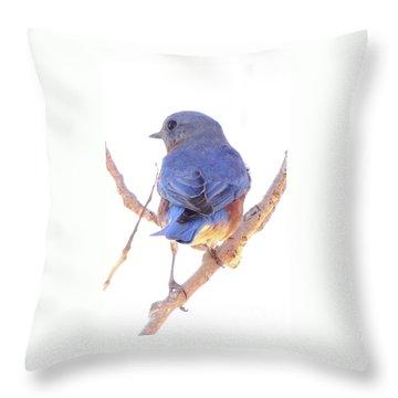 Bluebird On White Throw Pillow