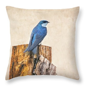 Throw Pillow featuring the photograph Bluebird Post by James BO Insogna