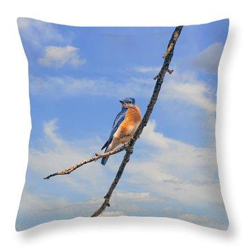Bluebird Sky Throw Pillow