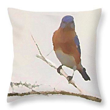 Bluebird Stare  Throw Pillow