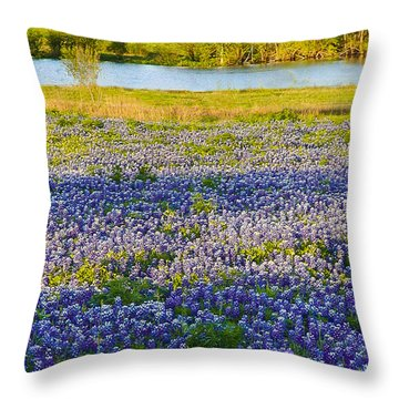 Bluebonnet Field Throw Pillow by Debbie Karnes