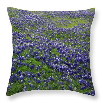 Bluebonnet Field Throw Pillow by Robyn Stacey