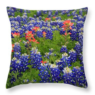 Bluebonnet Indian Painbrush Throw Pillow
