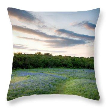 Bluebonnet Trail Ennis Texas 2015 V5 Throw Pillow